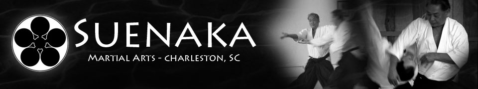 suenaka martial arts located in charleston south carolina